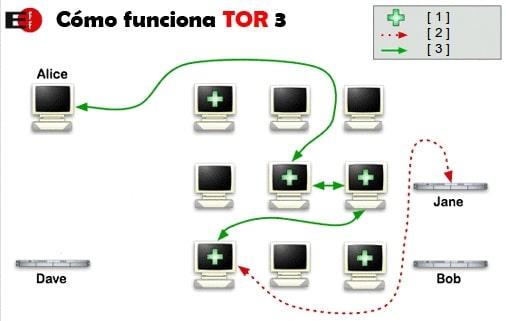 servidor tor